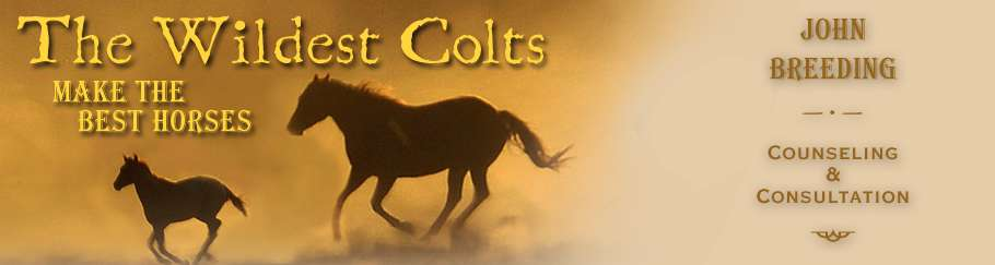 John Breeding - The Wildest Colts
